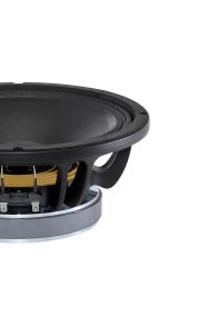 Haut-parleurs B&C Speakers 10 pouce