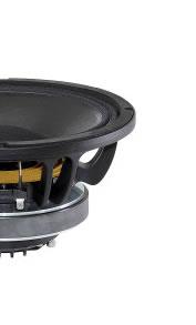 Haut-parleurs coaxiaux B&C Speakers 10 pouce