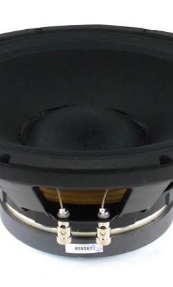 Haut-parleurs Radian de type woofer et grave/médium
