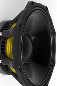 Haut-parleurs PHL Audio diamètre 30 cm / 12 pouce