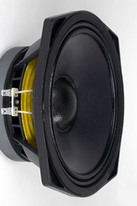 Haut-parleurs PHL Audio diamètre 20 cm / 8 pouce