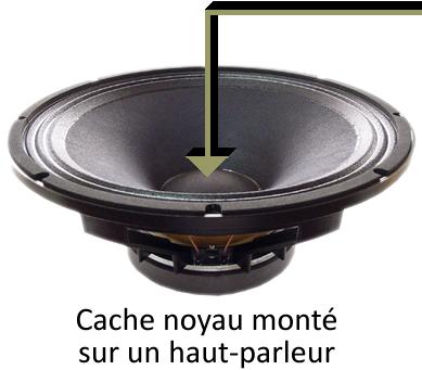 Un haut-parleur équipé d'un dôme cache poussière papier cellulose